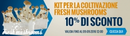 10% Di Sconto Fresh Mushrooms